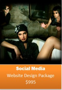 EBusiness Courses announces release of Social Media Web Design Packages for SME's